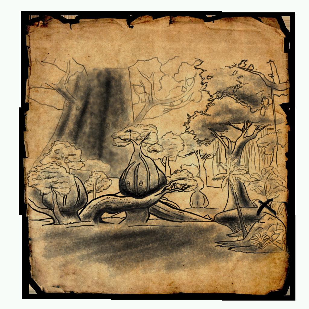 Grahtwood Treasure Map II | Elder Scrolls Online Wiki