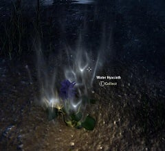 water-hyacinth-eso-alchemy-reagent
