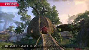 bosmer_small_home-eso-houses