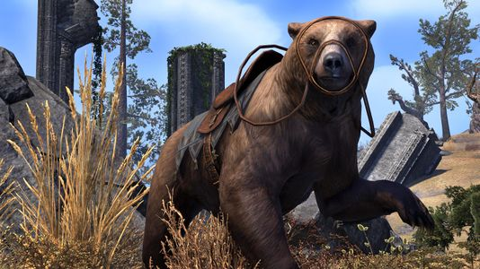 cave_bear_eso_wiki_guide