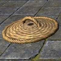 common_basket_lid