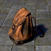 common_pack_backpack