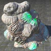 coral_formation_luminescent