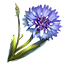 crafting_flower_corn_flower_r1.png