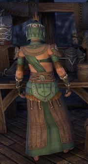 elder_argonian_robe_light_female_back_big