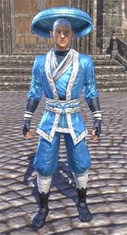 honor-guard-light-jerkin-eso-wiki-guide
