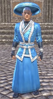 honor-guard-light-robe-eso-wiki-guide