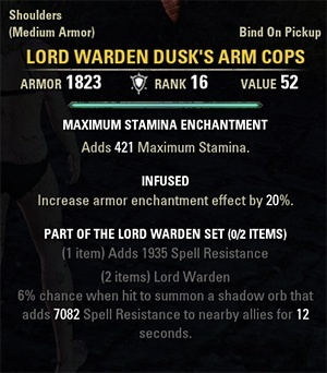lord_warden_dusk's_arm_cops.jpg