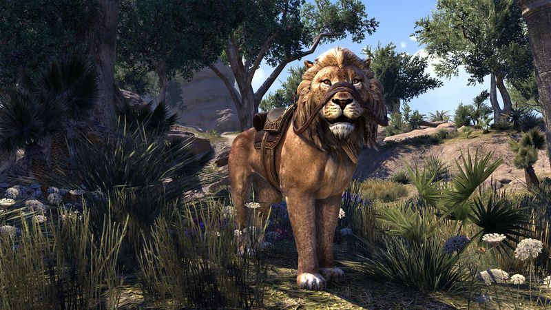 pride-king_lion_eso_wiki_guide