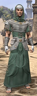 shield-of-senchal-homespun-male-robe-eso-wiki-guide