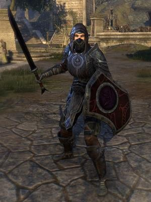 thieves_guild_style-heavy-armor-sword-shield