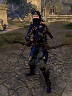 thieves_guild_style-medium-armor-bow