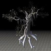 tree_strong_withered