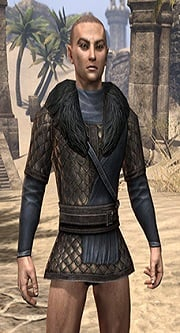 windhelm-scale-male-eso-wiki-guide1